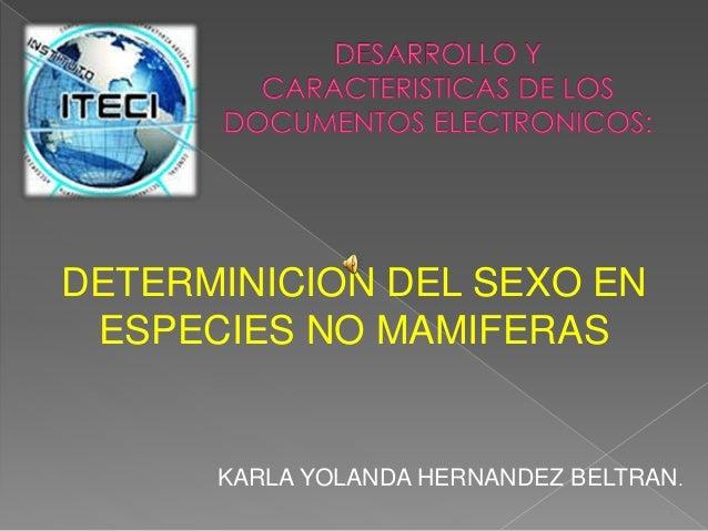 DETERMINICION DEL SEXO EN ESPECIES NO MAMIFERAS KARLA YOLANDA HERNANDEZ BELTRAN.