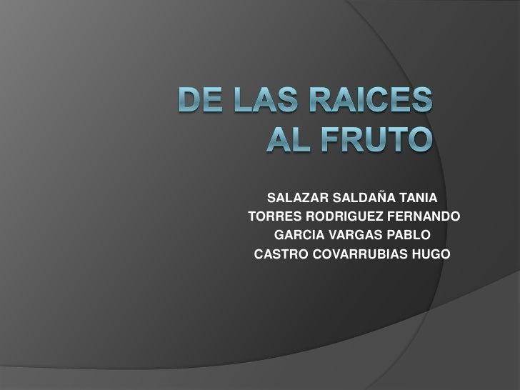 SALAZAR SALDAÑA TANIATORRES RODRIGUEZ FERNANDO   GARCIA VARGAS PABLO CASTRO COVARRUBIAS HUGO