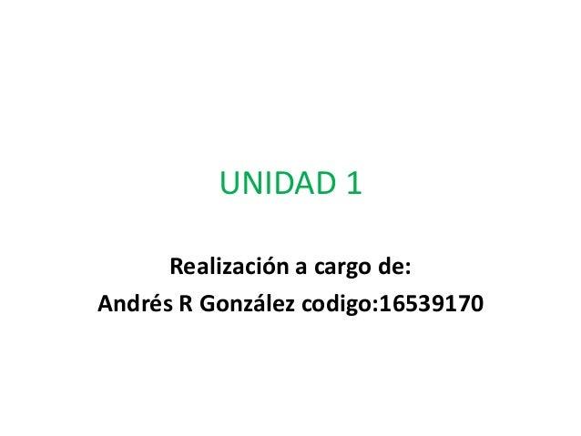 UNIDAD 1  Realización a cargo de:  Andrés R González codigo:16539170