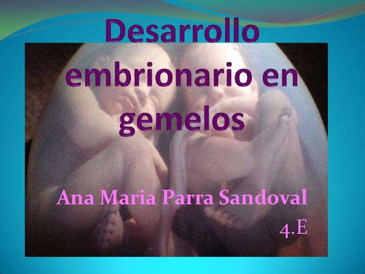 Desarrollo embrionario en gemelos<br />Ana Maria Parra Sandoval<br />4.E<br />