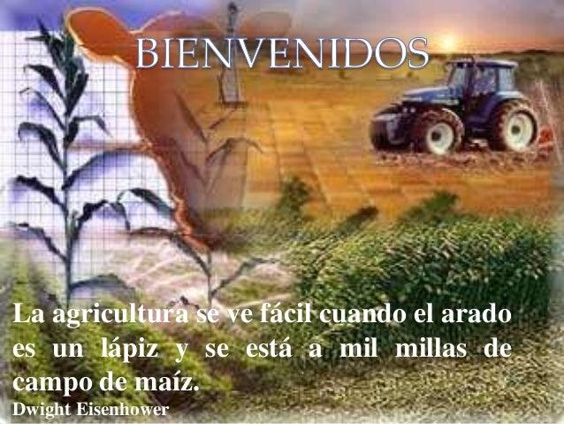 La agricultura se ve fácil cuando el arado es un lápiz y se está a mil millas de campo de maíz. Dwight Eisenhower