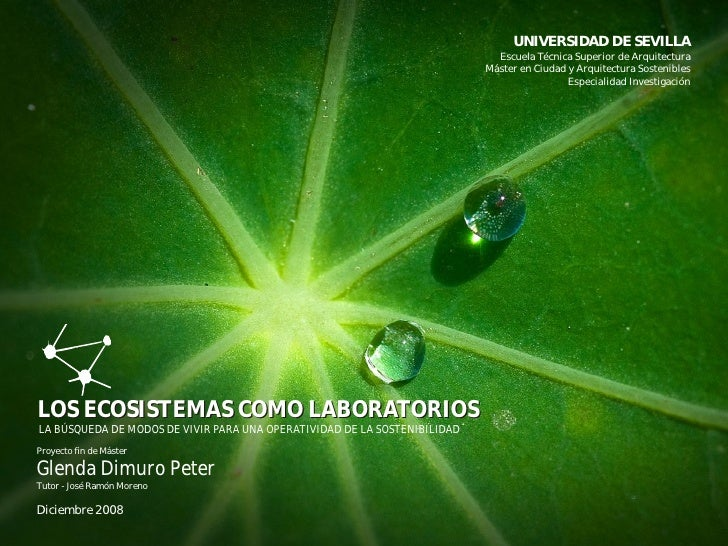 UNIVERSIDAD DE SEVILLA                                                                              Escuela Técnica Superi...