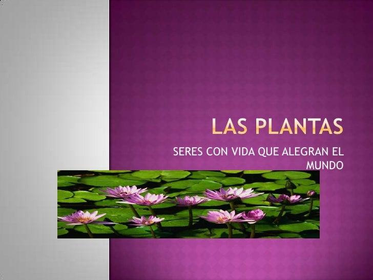 LAS PLANTAS<br />SERES CON VIDA QUE ALEGRAN EL MUNDO<br />