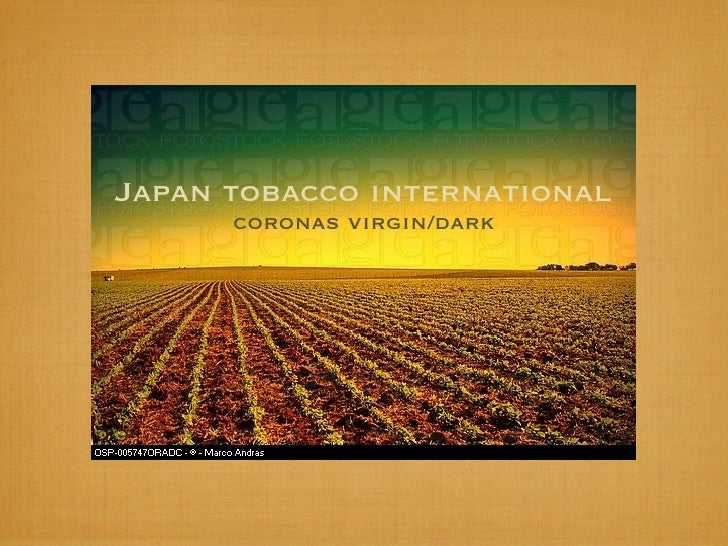Japan tobacco international       coronas virgin/dark