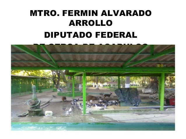 MTRO. FERMIN ALVARADO ARROLLO DIPUTADO FEDERAL DE CERCA DE ACAPULCO