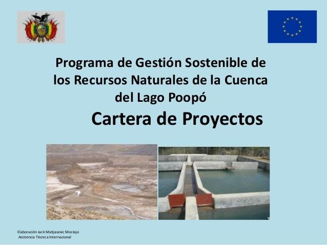 Programa de Gestión Sostenible de los Recursos Naturales de la Cuenca del Lago Poopó  Cartera de Proyectos  Elaboración Ja...
