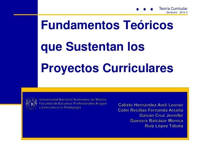 Fundamentos Teóricos que Sustentan los Proyectos Curriculares Teoría Curricular Semestre 2014-2