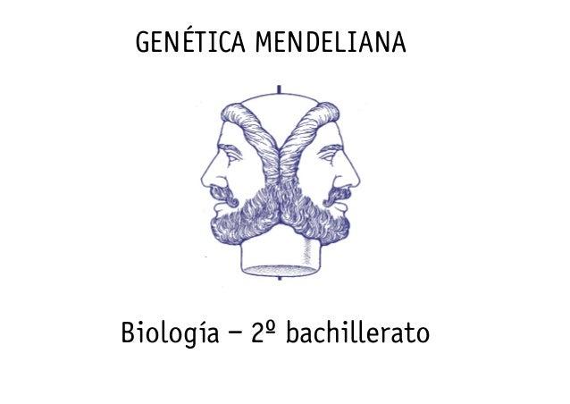 GENÉTICA MENDELIANA  Biología – 2º bachillerato