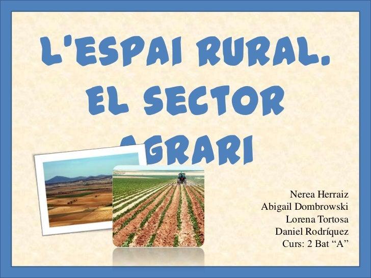 L'espai rural.  El sector    agrari                Nerea Herraiz          Abigail Dombrowski               Lorena Tortosa ...