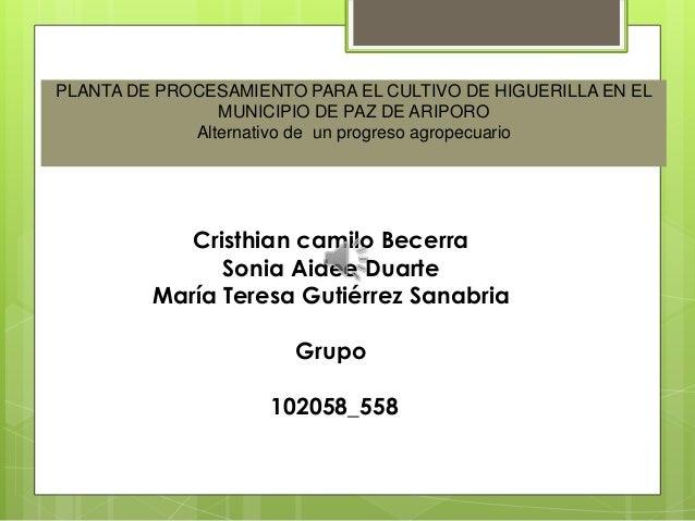 PLANTA DE PROCESAMIENTO PARA EL CULTIVO DE HIGUERILLA EN ELMUNICIPIO DE PAZ DE ARIPOROAlternativo de un progreso agropecua...