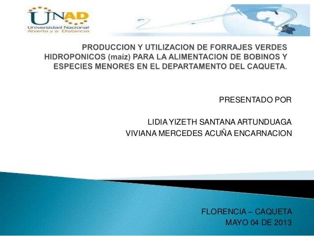 PRESENTADO PORLIDIA YIZETH SANTANA ARTUNDUAGAVIVIANA MERCEDES ACUÑA ENCARNACIONFLORENCIA – CAQUETAMAYO 04 DE 2013