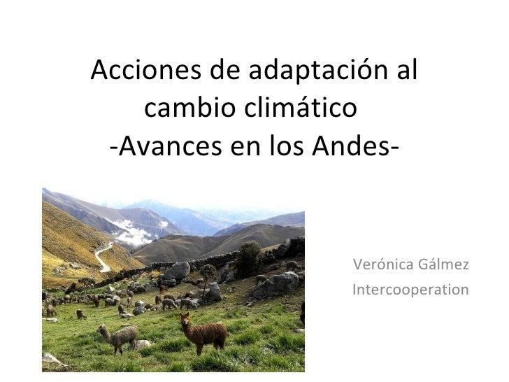 Acciones de adaptación al cambio climático. Acciones en los Andes. Verónica Galmez.