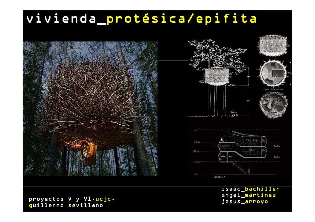 vivienda_protésica/epifita                         isaac_bachiller                         angel_martinezproyectos V y VI....