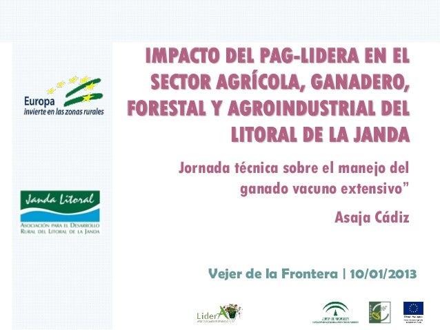 IMPACTO DEL PAG-LIDERA EN EL   SECTOR AGRÍCOLA, GANADERO,FORESTAL Y AGROINDUSTRIAL DEL           LITORAL DE LA JANDA     J...