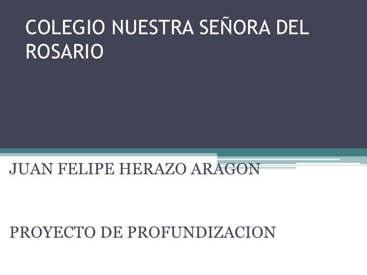 COLEGIO NUESTRA SEÑORA DEL ROSARIOJUAN FELIPE HERAZO ARAGONPROYECTO DE PROFUNDIZACION