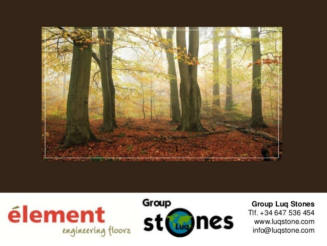 Presentacion élement luqstone group