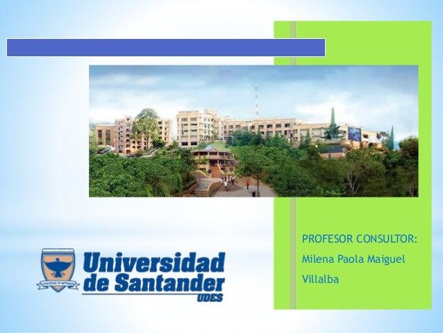 PROFESOR CONSULTOR: Milena Paola Maiguel Villalba
