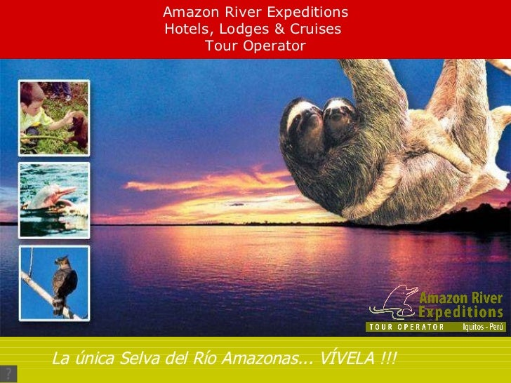 Amazon River Expeditions Hotels, Lodges & Cruises  Tour Operator La única Selva del Río Amazonas... VÍVELA !!!