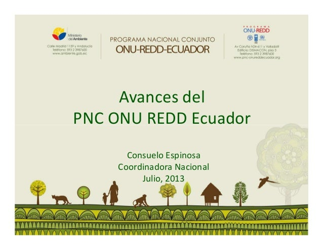 Avances del PNC ONU REDD Ecuador Consuelo Espinosa Coordinadora Nacional Julio, 2013