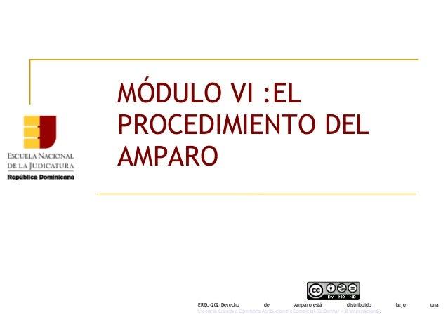 MÓDULO VI :EL PROCEDIMIENTO DEL AMPARO ERDJ-202-Derecho de Amparoestá distribuido bajo una Licencia Creative Commons Atr...