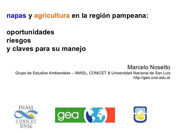Napas y Agricultura en la region pampeana: oportunidades, riesgos y claves para su manejo- Marcelo Nosetto