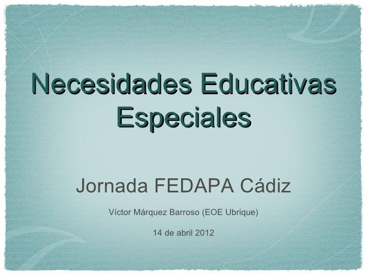 Necesidades Educativas      Especiales   Jornada FEDAPA Cádiz      Víctor Márquez Barroso (EOE Ubrique)                14 ...