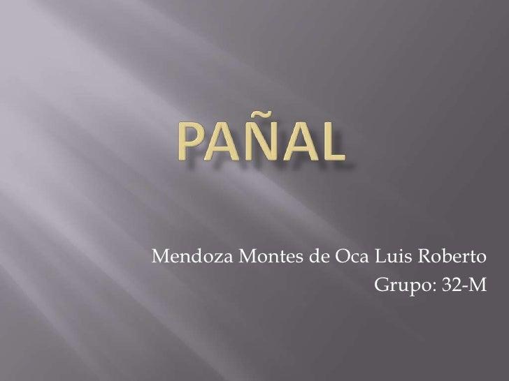 PAÑAL<br />Mendoza Montes de Oca Luis Roberto<br />Grupo: 32-M <br />