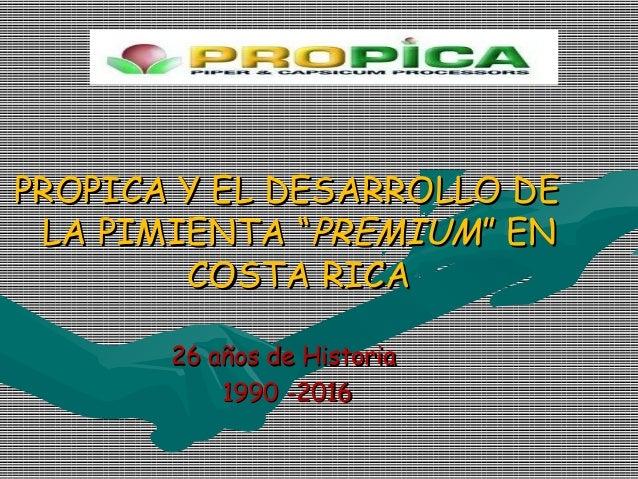 """PROPICA Y EL DESARROLLO DE LA PIMIENTA """"PREMIUM"""" EN        COSTA RICA     20 AÑOS DE HISTORIA          1,990 – 2,010"""