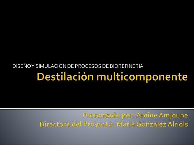 DISEÑOY SIMULACION DE PROCESOS DE BIOREFINERIA