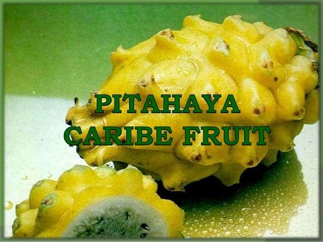 Nuestro mayor objetivo consiste en ser líder en el mercado de pitahaya amarilla en Colombia creando un mayor reconocimient...