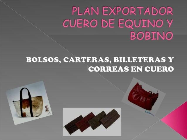 Presentacion plan exp.
