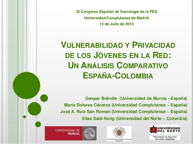 Vulnerabilidad y Privacidad de los Jóvenes en la Red: Un Análisis Comparativo España-Colombia