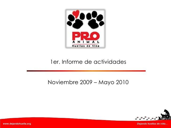 Presentacion pro animal informe semestral