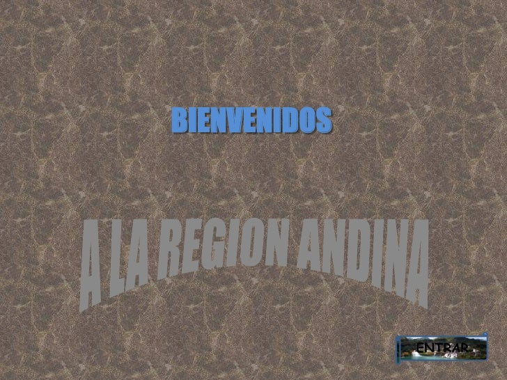 Presentacion region andina