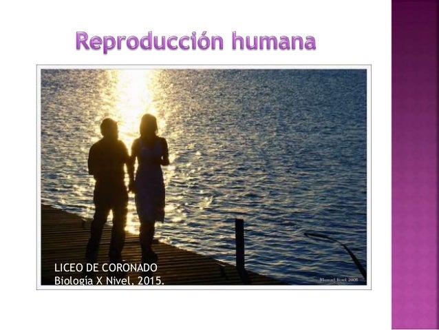 LICEO DE CORONADO Biología X Nivel, 2015.