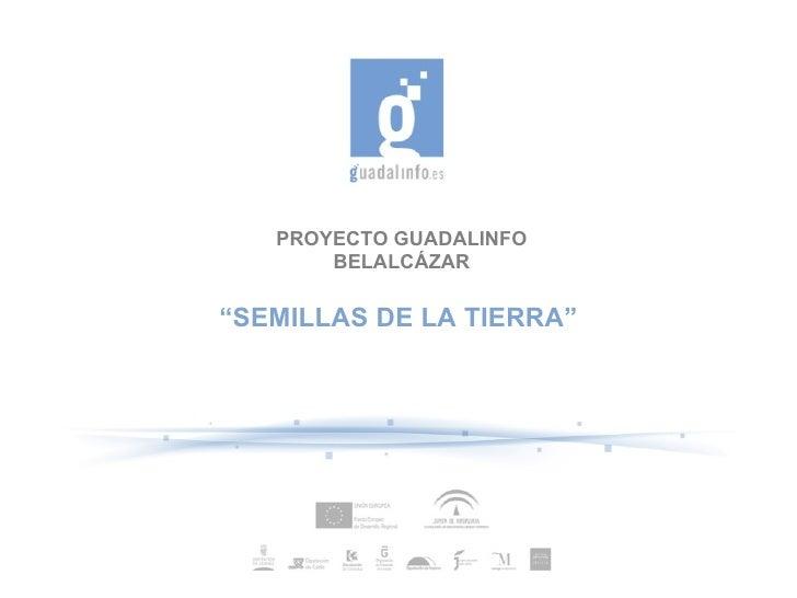 """PROYECTO GUADALINFO       BELALCÁZAR""""SEMILLAS DE LA TIERRA"""""""