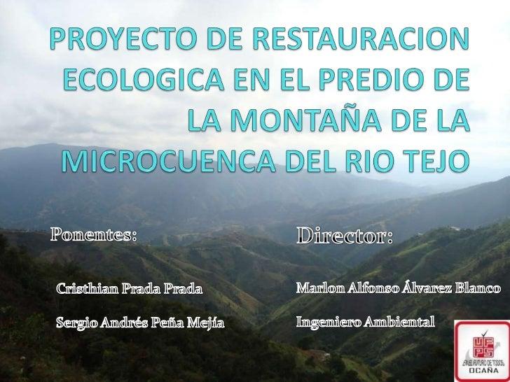RESTAURACION ECOLOGICA EN EL PREDIO DE LA MONTAÑA DE LA MICROCUENCA DEL RIO TEJO