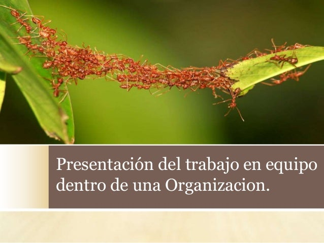 Presentación del trabajo en equipo dentro de una Organizacion.