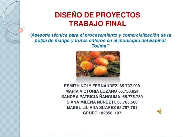"""DISEÑO DE PROYECTOS              TRABAJO FINAL""""Asesoría técnica para el procesamiento y comercialización de la  pulpa de m..."""