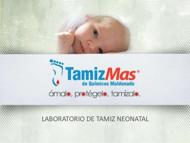 TamizMas