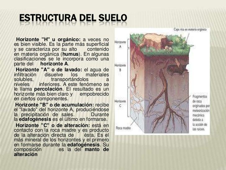Presentacion tda sobre suelo for Componentes quimicos del suelo
