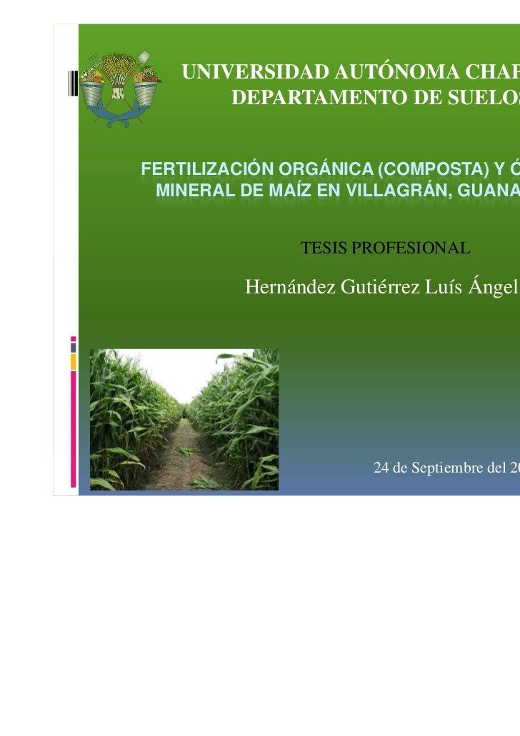 Presentacion tesis. fertilización orgánica (composta ) y órgano-mineral de maíz en villagrán, gtox
