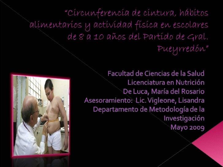 Presentacion Tesis De Luca