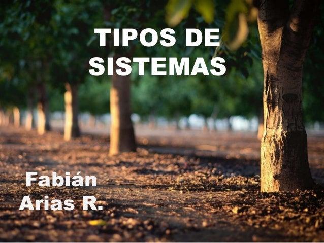 TIPOS DE SISTEMAS Fabián Arias R.