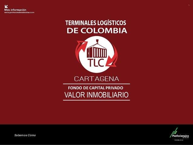 Presentacion tlc 2