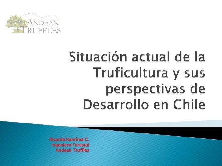 Cultivo y produccion de trufas en Chile