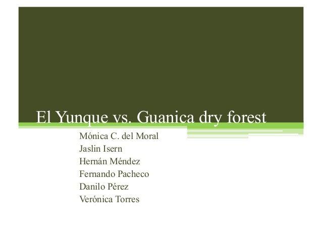 El Yunque vs. Guanica dry forest Mónica C. del Moral Jaslin Isern Hernán Méndez Fernando Pacheco Danilo Pérez Verónica Tor...