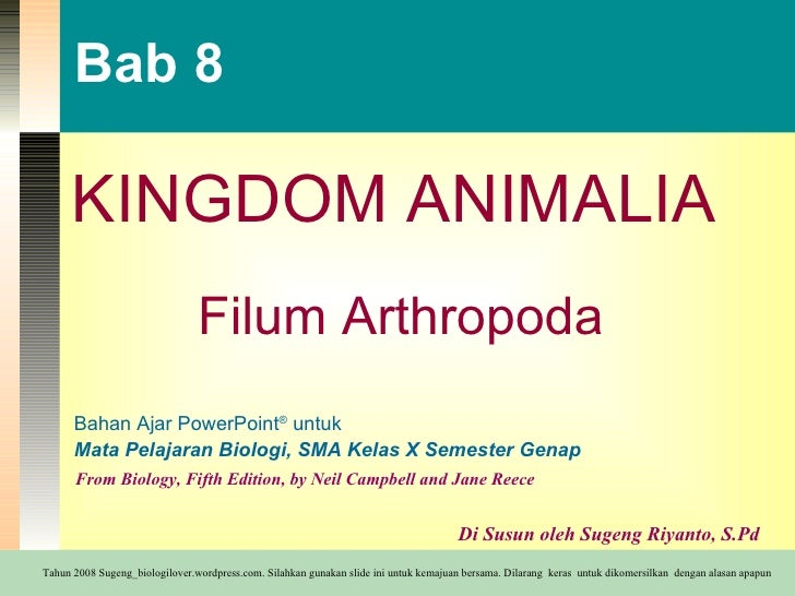Bab 8 KINGDOM ANIMALIA Filum Arthropoda