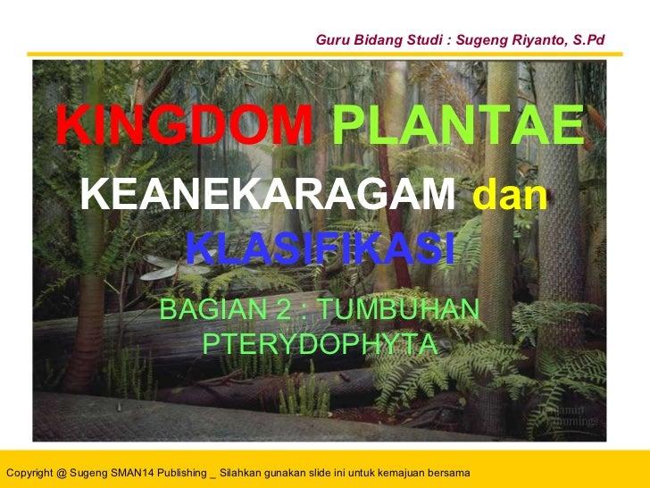KINGDOM PLANTAE Bahan Ajar PowerPoint ®  Untuk :   Siswa SMA Kelas X Guru Bidang Studi : Sugeng Riyanto, S.Pd BAGIAN 1 :  ...