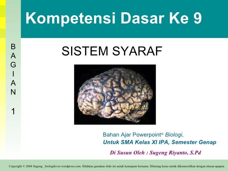 Kompetensi Dasar Ke 9 SISTEM SYARAF